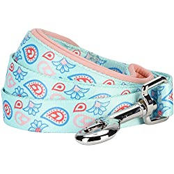 """Blueberry Pet 5 Colors Paisley Flower Print Dog Leash with Soft & Comfortable Handle, 5 ft x 5/8"""", Pastel Blue, Small, Leashes for Dogs"""