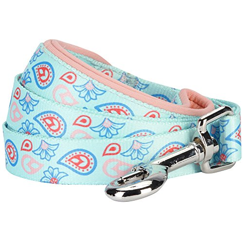 Blueberry Pet 5 Colors Paisley Flower Print Dog Leash with Soft & Comfortable Handle, 5 ft x 5/8, Pastel Blue, Small, Leashes for Dogs