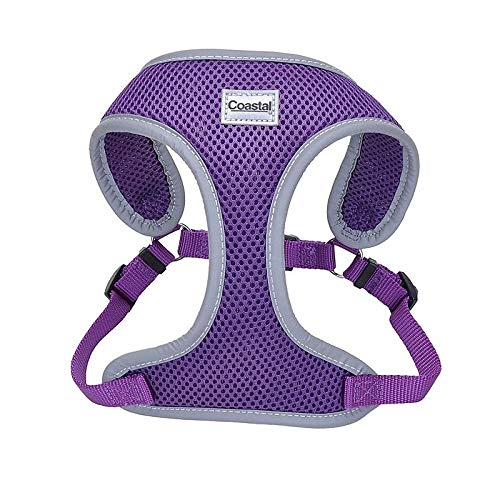 Coastal Pet Reflective Adjustable Dog Harness Purple 5/8 Inch X 19 Inch