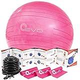 Yoga EVO Balance Ball Ab Workout Ball and Pump Set