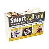 Dry-Erase Paint - 36m² / 388 ft² Clear