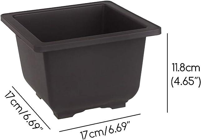 100 Pack Black Garden Nursery Plastic Pots 1//2 Gallon Flower Plant Container 8cm