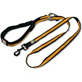 Kurgo 6-in-1 Quantum Dog Leash, Black & Orange - Lifetime Warranty