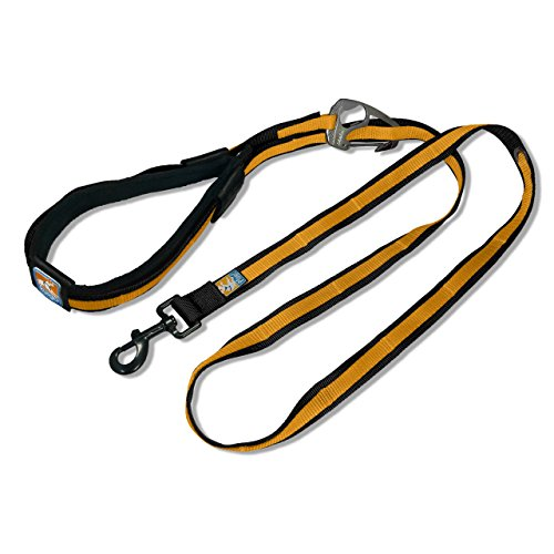Kurgo Quantum Leash Black Orange