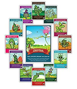 100% CERTIFIED ORGANIC 12 Herb Set - Popular varieties of Easy to Grow Seeds - USDA Certified Seed Company passionate about helping to teach how to grow safe healthy food!