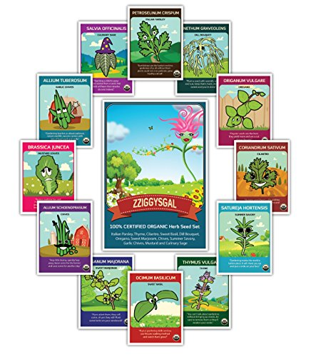 100% CERTIFIED ORGANIC 12 Herb Set - Popular varieties of Easy to Grow Seeds - USDA Certified Seed Company