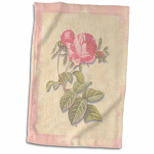 3dRose 3D Rose Victorian Dark Pink Roses on Antique Look Paper Background Light Pastel twl_186921_1 Towel, 15