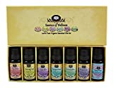 Authentic 100% Pure Organic Essential Oil Starter Gift Set by Essens Oils - BONUS Stress Relief Blend and eBook