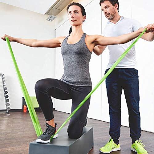 PINOFIT Bandas de fitness – Bandas de resistencia individualmente o en juego – Banda elástica – Banda de gimnasia 2 m en calidad profesional – para ...