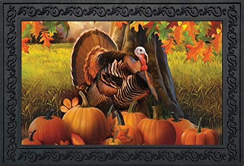 Briarwood Lane Harvest Turkey Fall Thanksgiving Doormat Autumn Pumpkins Indoor Outdoor 18 x 30
