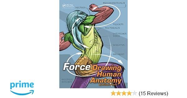 Amazon Force Drawing Human Anatomy Force Drawing Series