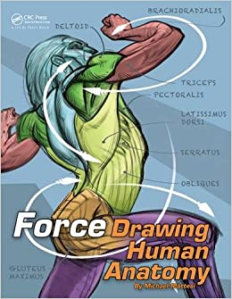 ~REPACK~ FORCE: Drawing Human Anatomy (Force Drawing Series). PROCESO occur SPORT During Rhode between 51tnvUnirnL._SX258_BO1,204,203,200_