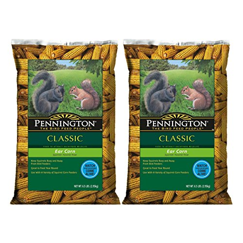 Pennington Ear Corn on Cob Squirrel Food (2, 6.5 lb)