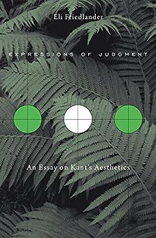 kants aesthetics Kants analyse des Ästhetischen erregt bis heute großes interesse und ist vielfach auch für das verstehen moderner kunst  theory of aesthetics and teleology.
