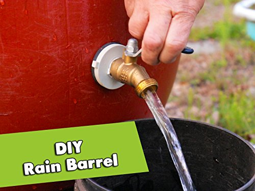 (How To Make A Rain Barrel: Simple Rainwater Harvesting)