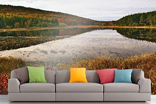 Roshni Arts - Curated Art Wall Mural - Nature Series - 1386 | Self-Adhesive Vinyl Furnishings Décor Wall Art - 96x72 - 1386 Series