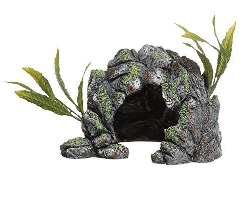 in Cave, Medium ()