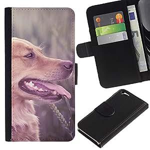 Be Good Phone Accessory // Caso del tirón Billetera de Cuero Titular de la tarjeta Carcasa Funda de Protección para Apple Iphone 6 4.7 // Labrador Retriever Field Brown Longhair Dog