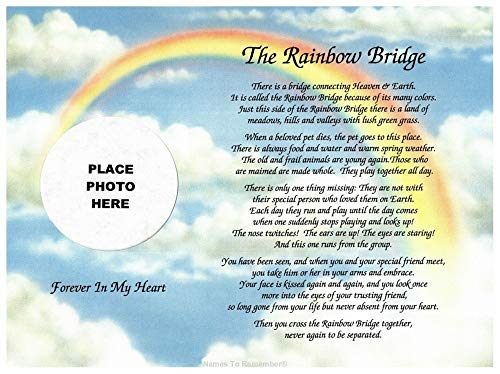 Cazual Creations in Memory of Pet Rainbow Bridge Memorial Poem Sentimental Gift for Loss of Dog Cat