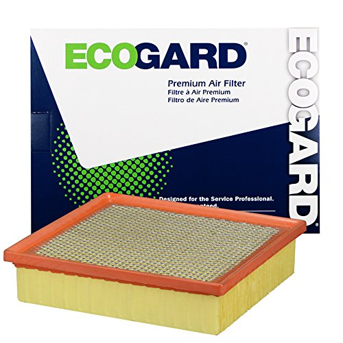ECOGARD XA6116 Premium Engine Air Filter Fits Jeep Grand Cherokee / Toyota Sienna / Lexus RX350 / Toyota Highlander / Dodge Durango / Lexus ES350 / Toyota Avalon, Camry / Lexus NX200t, RX450h