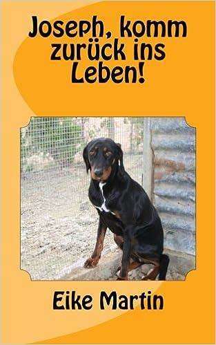Joseph, komm zurück ins Leben! (German Edition)