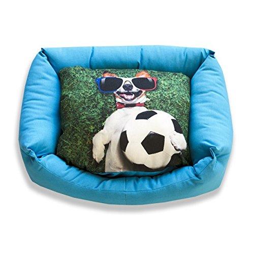 DAGOSTINO HOME - Cama cuna tridimensional para mascotas CHAMPIONS LEAGUE - M - 40X50: Amazon.es: Hogar
