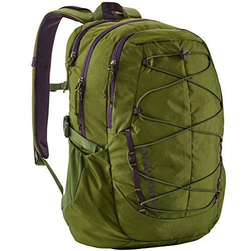 Patagonia Chacabuco Pack 30L Sprouted Green