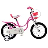 RoyalBaby Little Swan Girl's Bike with basket,14 inch with training wheels, 18 inch with kickstand, Gifts for kids