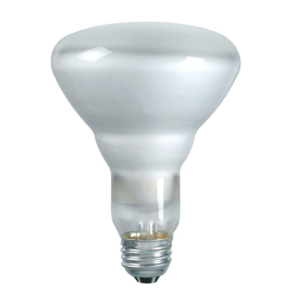 Philips 223032 Duramax 45-Watt Incandescent BR30 Flood Light Bulb 12-Pack