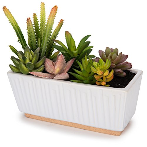 MyGift Mixed Artificial Succulent Plant Arrangement in 9-Inch Fluted White Ceramic Planter Pot ()