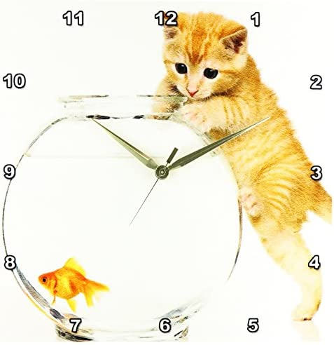3dRose dpp_54107_2 Almost Can Reach Says Kitten-Wall Clock, 13 by 13-Inch