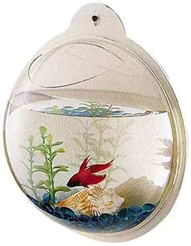 - KAZE HOME Wall Mount Fishbowl