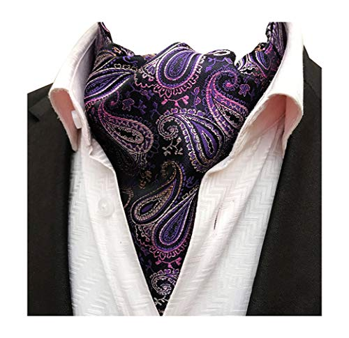 Pleated Necktie Silk (MOHSLEE Men's Purple Paisley Ascot Neckties Woven Silk Banquet Cravat Scarf Ties)