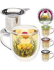 Teabloom - Taza de cristal de borosilicato de doble pared con infusor de acero inoxidable y tapa, 2 tés gourmet florecientes incluidos