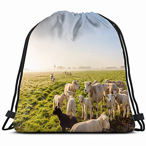 Morning Sun On Grass Field Sheep Animals Wildlife Agriculture Drawstring Bag Backpack Gym Dance Bag Reversible Flip Sequin Bling Backpack For Hiking Beach Travel Bags