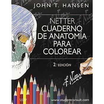 NETTER CUADERNOS DE ANATOMIA PARA COLOREAR / 2 ED.