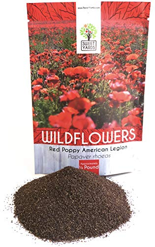 Red Poppy Seeds - Bulk 1/4 Pound Bag - Over 800,000 Wildflower Seeds - 100% Pure Live ()