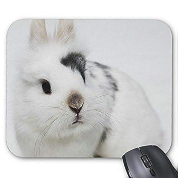 Mousepad del cojín de ratón del juego Conejo precioso ...