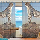 Cheap INGBAGS Bedroom Decor Living Room Decorations Cheetah Pattern Print Tulle Polyester Door Window Gauze / Sheer Curtain Drape Two Panels Set 55×78 inch ,Set of 2