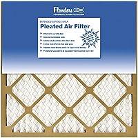 FLANDERS 81555.01202 20x20x1Bas Pleat Filter