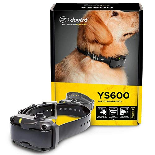 Dogtra YS600 Rechargeable Waterproof