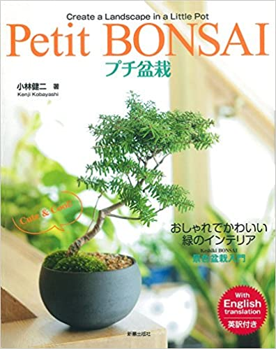 Petit BONSAI プチ盆栽