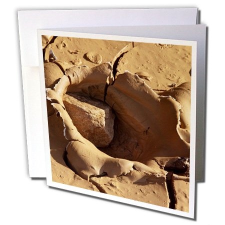 3dRose Danita Delimont - Death Valley - California, Death Valley National Park, dried curling mud. - 1 Greeting Card with envelope (National Mud)