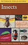 A Peterson Field Guide to Insects: America North of Mexico
