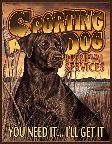 (Desperate Enterprises Sporting Dog Services)