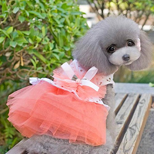Image of HP95(TM) Pet Dog Dress, 2015 Romantic, Lovely, Puppy Dog, Princess, Tutu, Dress (L, Orange)
