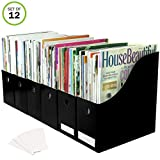 Evelots Set of 12 Magazine File Holders Desk Organizer, File Storage with Labels, Black