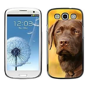 Vortex Accessory Carcasa Protectora Para SAMSUNG GALAXY S3 III i9300 - Vizsla Dog Breed Canine Autumn Pet -