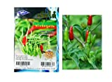Thai Bird's eye Chilli Seeds Prik-Khee-Nu-Suan Grow your Own Organic Thai Herbs 106 quality seeds