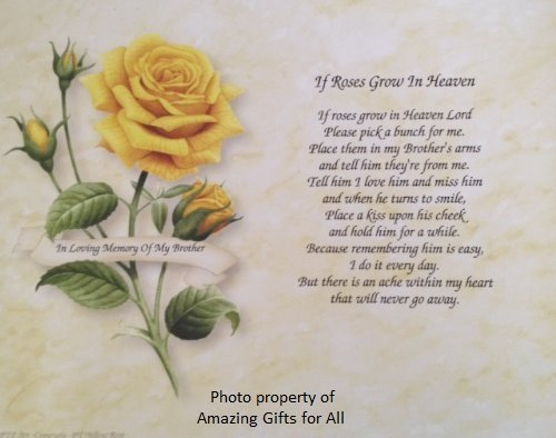 Amazoncom In Memory Of Brother If Roses Grow In Heaven Gift For